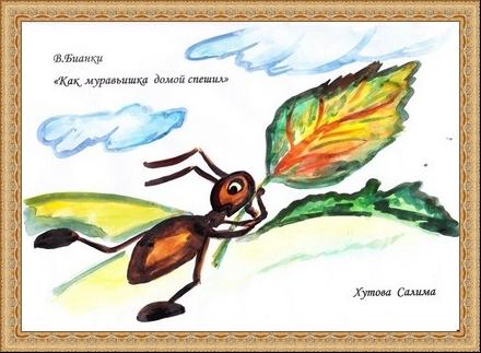 Бианки как муравьишка домой собирался рисунок